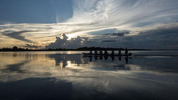 Parque nacional de la Amazonia (Brasil) - Sputnik Mundo