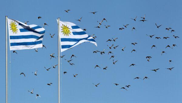 Banderas de Uruguay. Imagen referencial - Sputnik Mundo