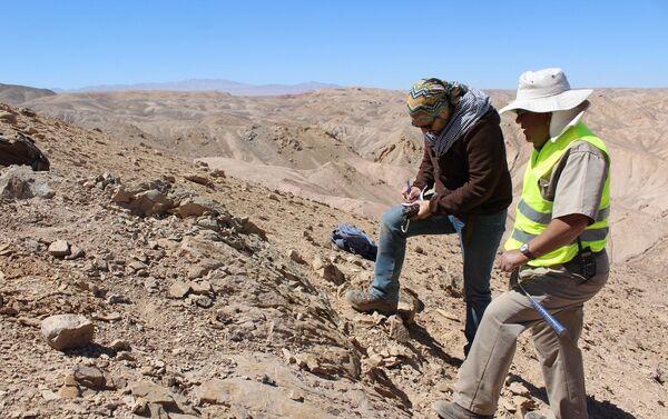 Investigadores de la U. de Chile y del Museo de Historia Natural y Cultural del Desierto de Atacama en el sitio - Sputnik Mundo