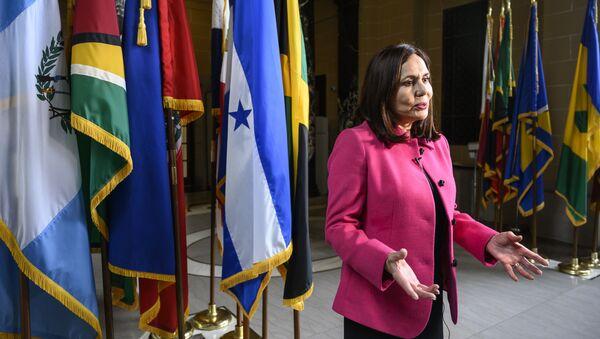 Karen Longaric, cancller de Bolivia - Sputnik Mundo