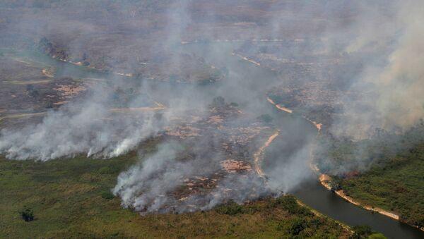 Incendios en Pantanal brasileño - Sputnik Mundo