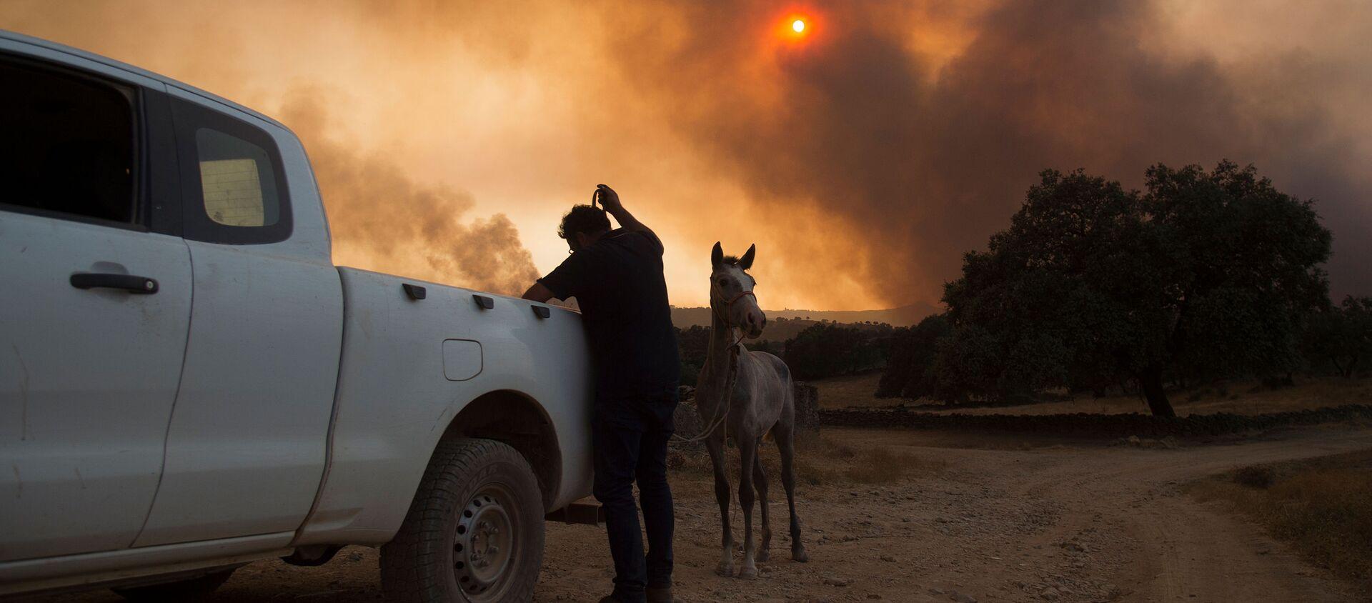 Incendios forestales en Huelva, España  - Sputnik Mundo, 1920, 09.09.2020