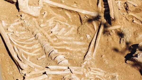 Uno de los esqueletos encontrados en Buriatia, Rusia - Sputnik Mundo
