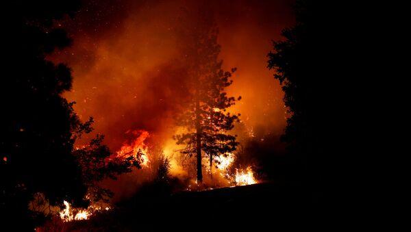 Incendios forestales en California el 8 de septiembre de 2020 - Sputnik Mundo