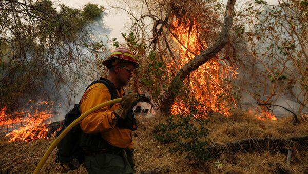 Los incendios forestales en EEUU - Sputnik Mundo