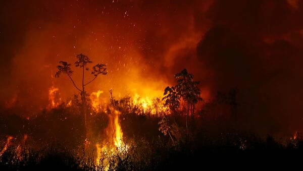 Incendios en el Pantanal - Sputnik Mundo