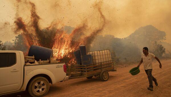 Волонтер пытается потушить пожар на дороге в Бразилии - Sputnik Mundo