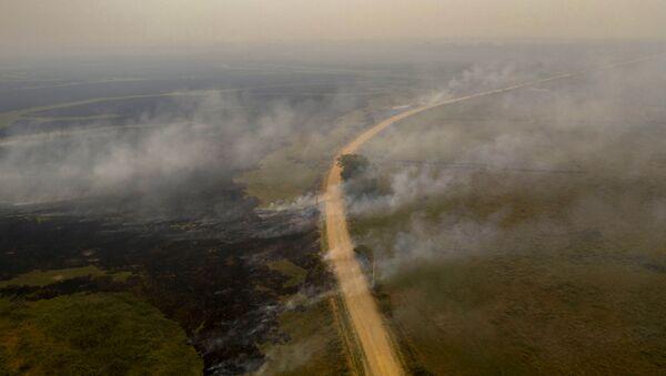Вид с воздуха на лесной пожар в Бразилии - Sputnik Mundo