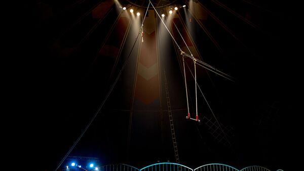 Circo (imagen referencial) - Sputnik Mundo