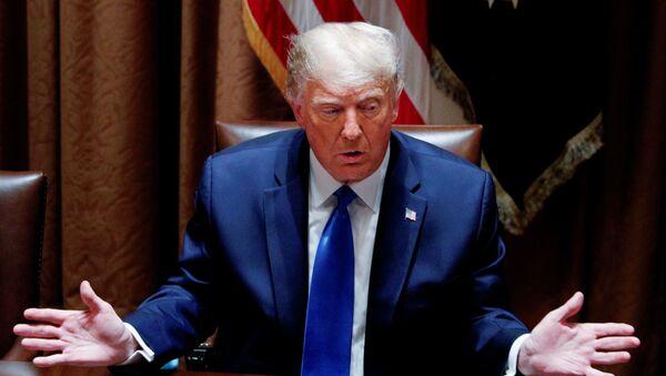 Donald Trump, presidente de los Estados Unidos - Sputnik Mundo