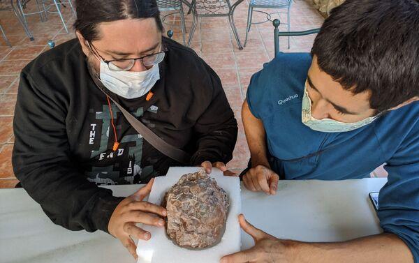 Los paleontólogos Miguel Moreno-Azanza y José Manuel Gasca junto a un huevo de dinosaurio - Sputnik Mundo