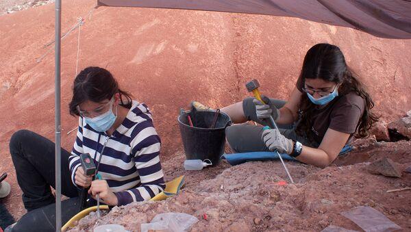 Paleontólogas trabajando en la excavación de Loarre (Huesca) - Sputnik Mundo