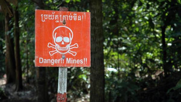 Un campo minado en Camboya, foto de archivo - Sputnik Mundo