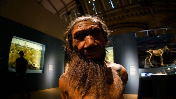 Un neandertal (imagen referencial) - Sputnik Mundo