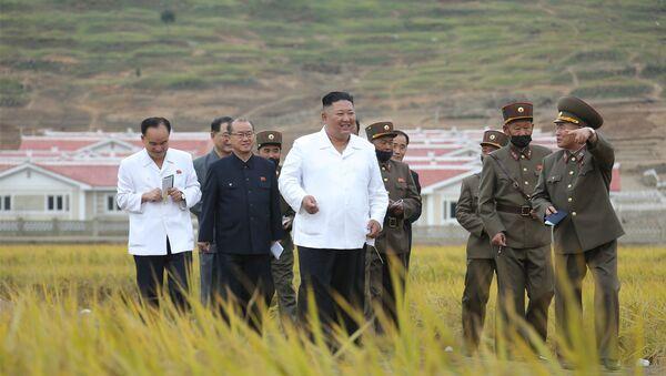 Kim Jong-un, líder norcoreano, durante la inspección de las obras de reconstrucción de las zonas azotadas por los tifones - Sputnik Mundo