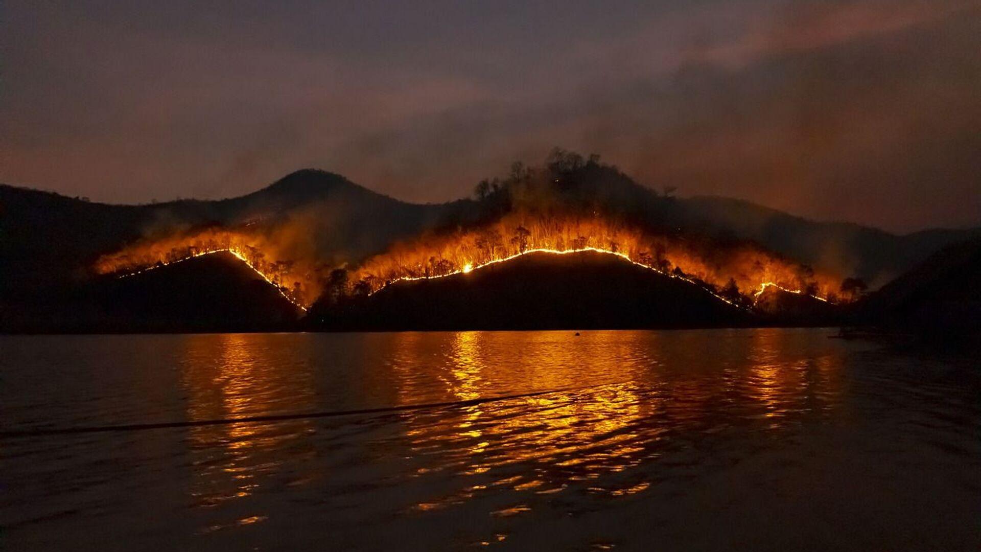 Incendios forestales (imagen referencial) - Sputnik Mundo, 1920, 22.02.2021