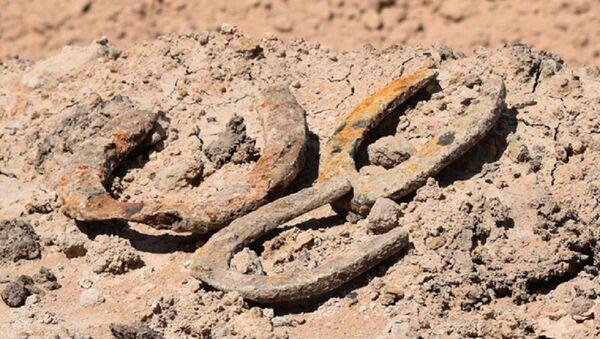 Las herraduras encontradas en el campo de River Plate - Sputnik Mundo