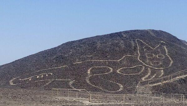 Geoglifo de forma de un felino en las Líneas de Nazca en Perú - Sputnik Mundo