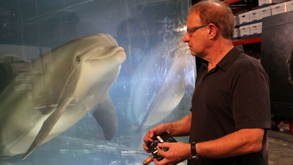 El delfín robótico de Edge Innovations - Sputnik Mundo