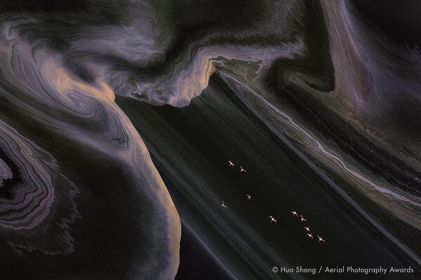 Aviones en llamas y naufragios: las mejores fotos aéreas de 2020   - Sputnik Mundo