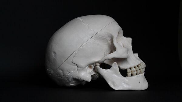 Un cráneo humano (archivo) - Sputnik Mundo