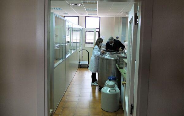 Banco de semen y embriones en el Censyra de Madrid - Sputnik Mundo