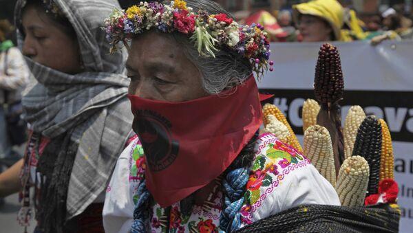 Mujer rural mexicana durante la protesta contra Monsanto - Sputnik Mundo