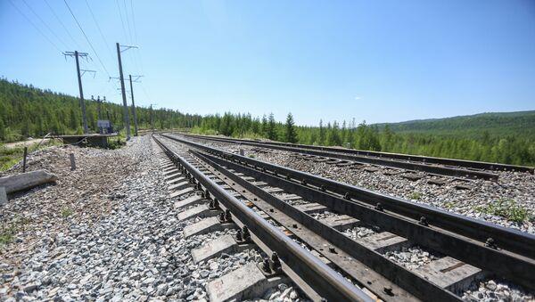 Un ferrocarril - Sputnik Mundo