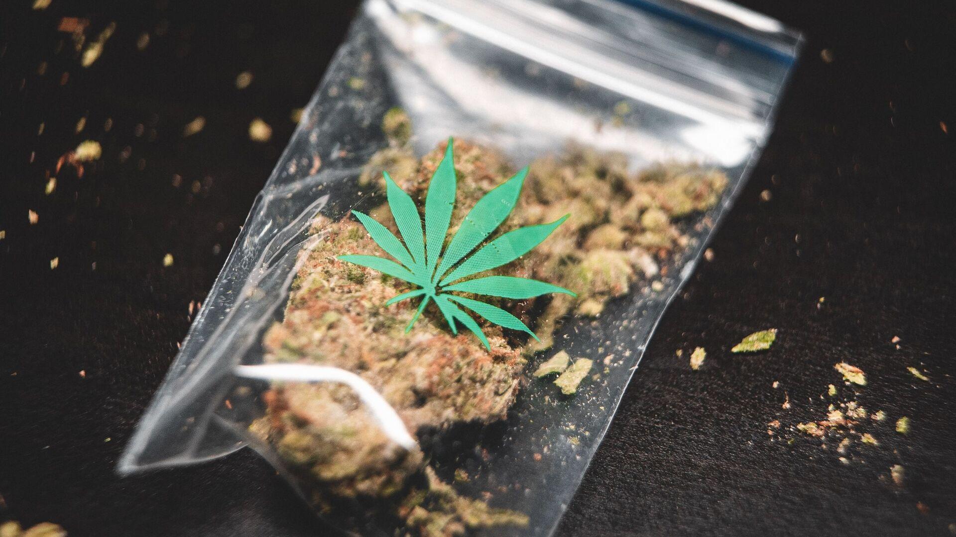 Una bolsa con cannabis (imagen referencial) - Sputnik Mundo, 1920, 31.03.2021