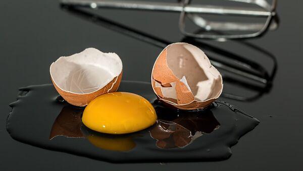 Un huevo - Sputnik Mundo