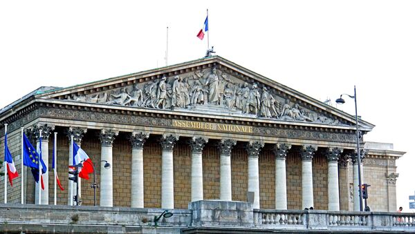 La Asamblea Nacional de Francia - Sputnik Mundo