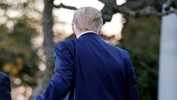 Presidente de EEUU, Donald Trump - Sputnik Mundo