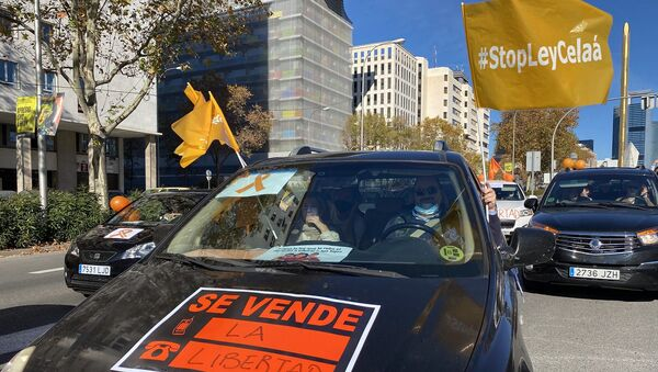 Protesta contra la ley Celaá - Sputnik Mundo
