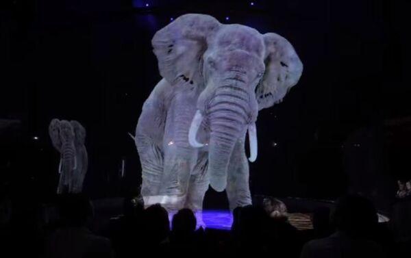 Holograma de un elefante en el Circus Internacional - Sputnik Mundo