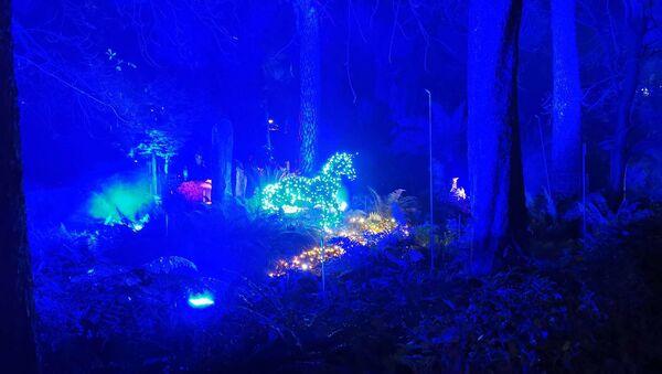 Iluminación del Jardín Botánico de Madrid - Sputnik Mundo