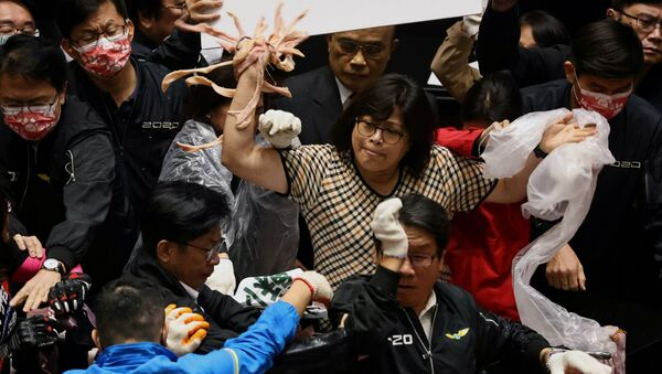 Los parlamentarios taiwaneses tiran intestinos de cerdo - Sputnik Mundo