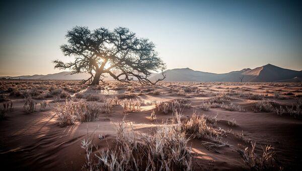 Paisaje de Namibia - Sputnik Mundo