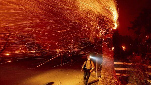 Un desastre en California: incendios, apagones y evacuaciones   - Sputnik Mundo