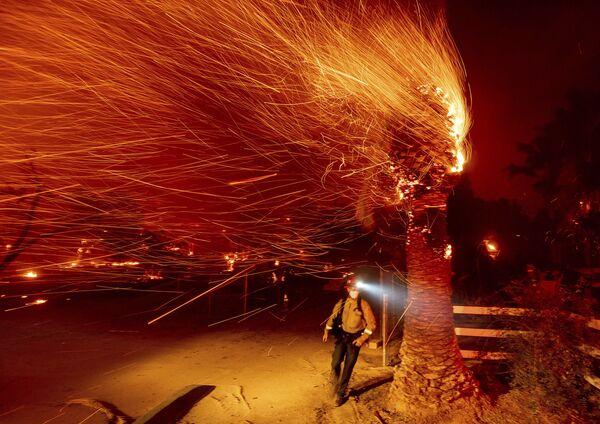 El incendio forestal amenaza a Los Ángeles. Las llamas arden ya a 80 kilómetros de la ciudad. Miles de personas están siendo evacuadas de los alrededores.En la foto: la extinción del incendio en el condado de Orange, en California. - Sputnik Mundo