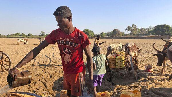 Los hombres cavan en busca de agua en el cauce seco del río Mandrare, en Madagascar - Sputnik Mundo