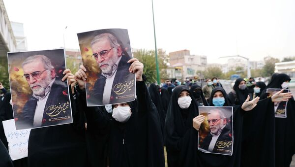 Manifestación contra el asesinato del científico iraní Mohsen Fajrizade en Teherán, Irán - Sputnik Mundo