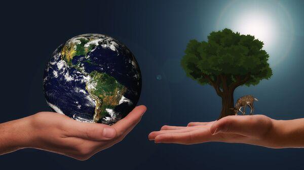 Reciclaje (imagen referencial) - Sputnik Mundo