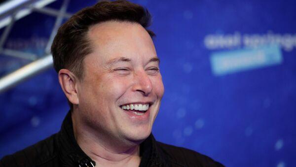 Elon Musk, director ejecutivo de SpaceX - Sputnik Mundo