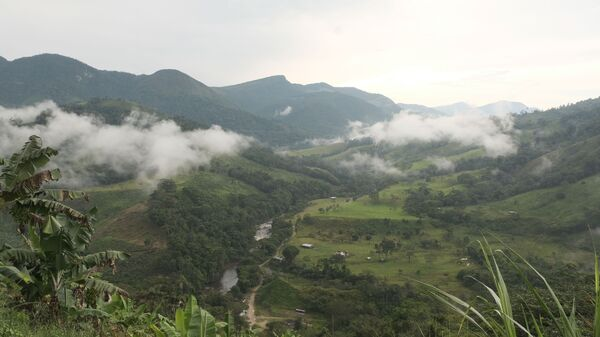 Bosques del departamento de Chocó, Colombia - Sputnik Mundo
