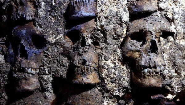 La parte del Huei Tzompantli de México-Tenochtitlan - Sputnik Mundo