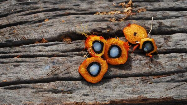 Unas frutas con aceite de palma dentro - Sputnik Mundo