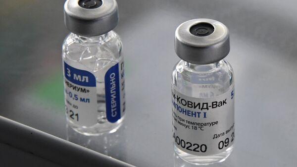 La vacuna rusa Sputnik V - Sputnik Mundo