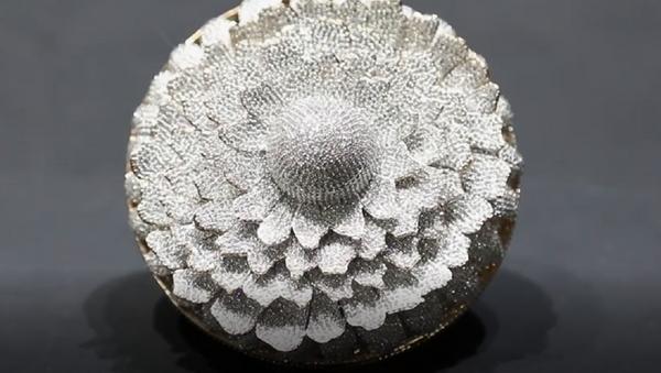Un anillo con un número récord de diamantes de la India entra al libro Guinness - Sputnik Mundo