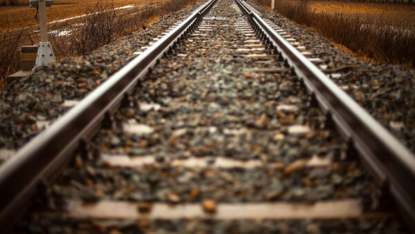 Las rieles de un tren (imagen referencial) - Sputnik Mundo
