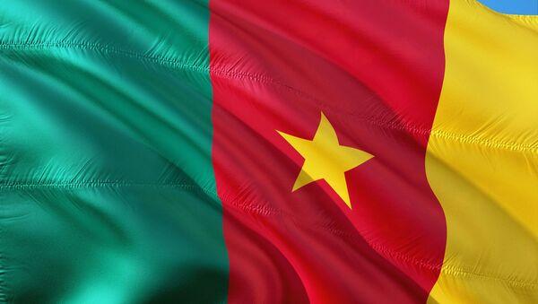 La bandera de Camerún  - Sputnik Mundo